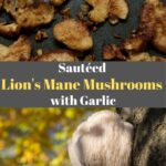 sautéed lion's mane mushrooms with garlic Pinterest thumbnail