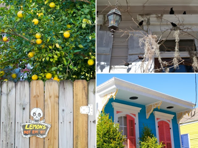 Some of the clever and colorful sites in the Bywater neighborhood. Home decor here blows Martha Stewart out of the water - the sense of art and creativity is amazing!