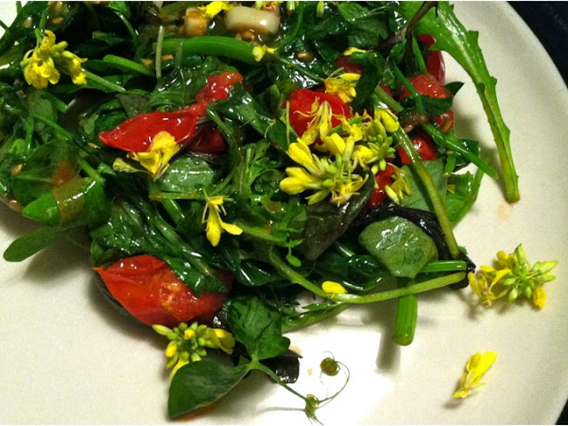 Wilted Pea Shoots with Wild Mustard Flowers