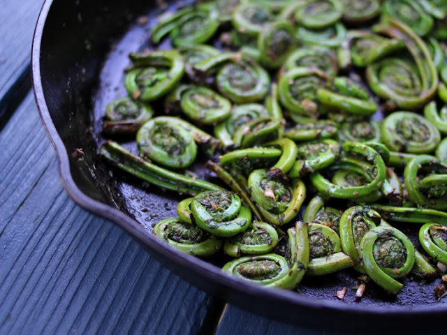 Fiddleheads Sautéed with Garlic and Herbs