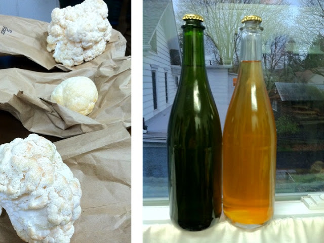 Bryan broughtLion's Mane mushrooms, grown in his lab at Cornell and sauteed with butter and garlic. Delectable. Emma brought hard cider from Chris's One of a Kind Orchard. Fizzy deliciousness! Nick also brought a delicious collection of wines.