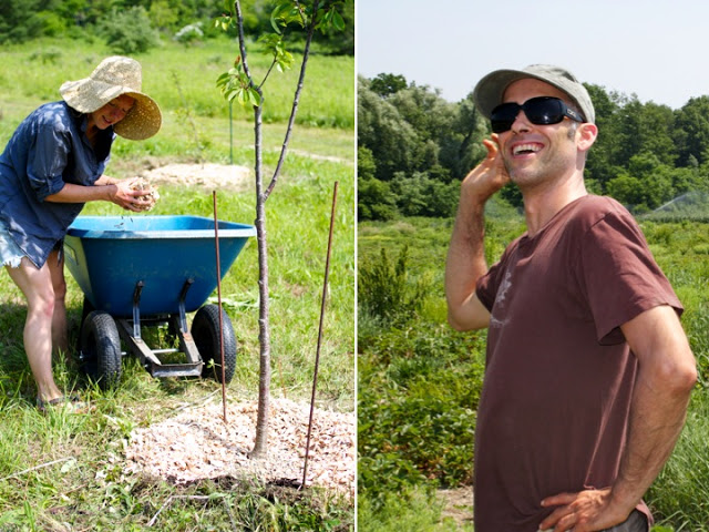 Left to right: Sara mulching the trees. David Solid Gould. This man rocks.