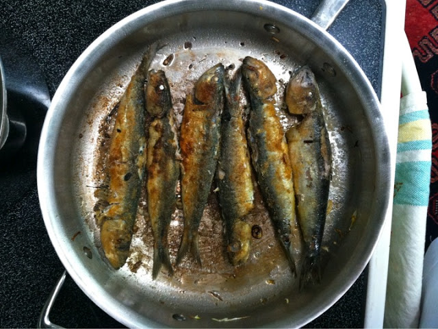 how to cook large sardines