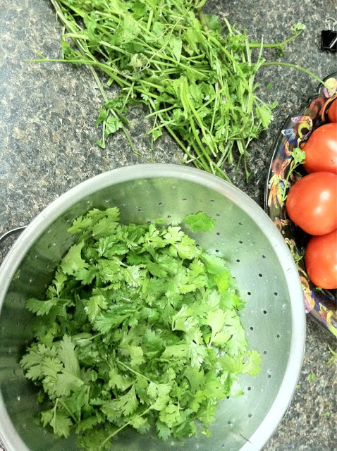 How to Store Herbs and Greens in the Freezer