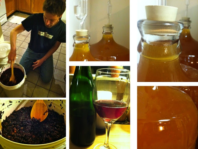 Chris explains the various fermentation processes taking place in his kitchen. Red wine, hard cider, and a treat: black currant hard cider from Bellwether Cidery.