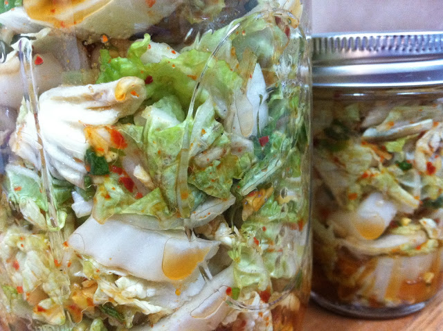 How to make homemade kimchi emma frisch for Asia cuisine ithaca hours