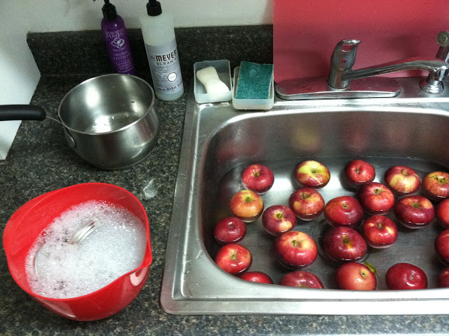 Wash your jars and lids first in hot soapy water. Transfer jars to your water bath on the stove top, where you should be bringing a pot of water to a boil. This will sterilize them prior to canning. Wash apples in the sink.