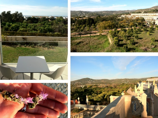 """The view from my room. I thanked the reception for giving me the best room in the house. Perplexed, they replied """"but everyone has the same view."""" Glee. Everyone will be as happy as I am! Top right: the hotel room windows, built into the contemporary extension to the historic palacio. Bottom right: Lavender."""