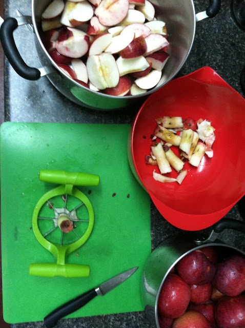 "Transfer apples to a pot. Have a ""waste"" bowl - add it to your compost if you have one! Have another bowl ready with water and a very healthy squirt of lemon or lime juice. This will keep your apple slices from browning before you're ready to cook them down! A corer is KEY! I have made apple sauce without one, and I assure you, this saves loads of time. Every now and then you'll have scoop out a core or seeds, but not often!"