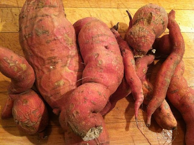 Quirky, curvy sweet potatoes from mamma's garden.